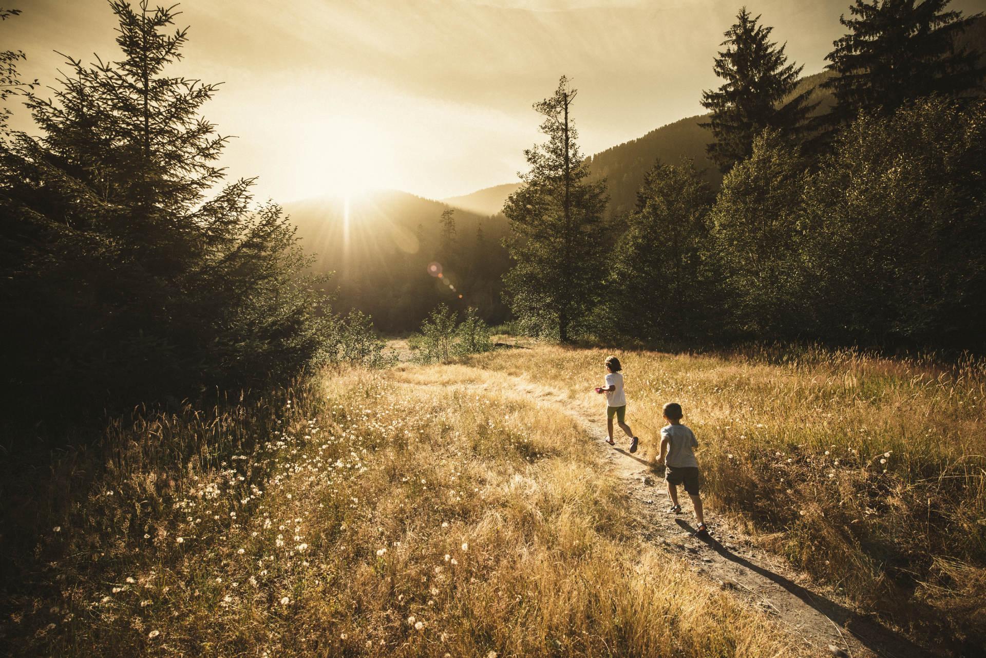 Trail Walking